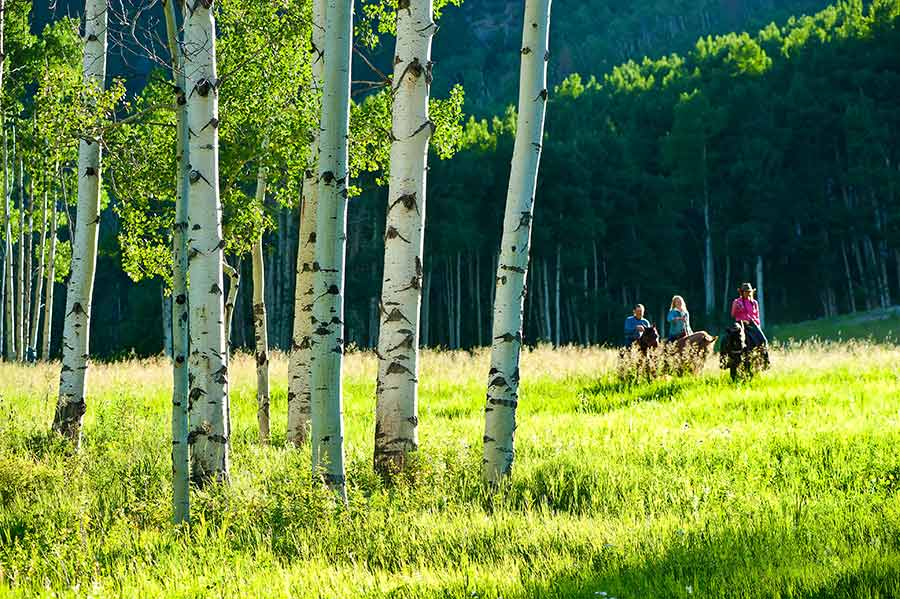 Summer Activities in Beaver Creek