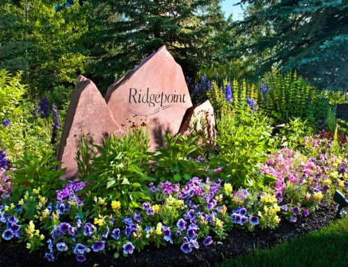"""Ridgepoint honored in """"Best of Beaver Creek"""" contest"""
